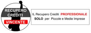 Studio Stefano Parisi Recupero Crediti Professionale